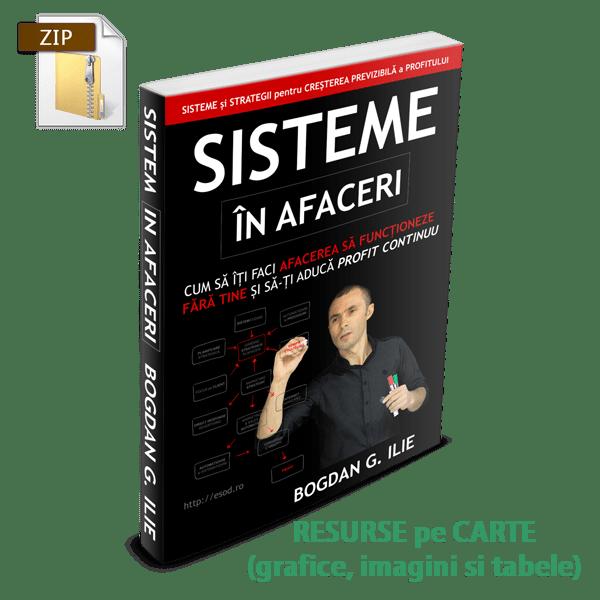 Resurse - Sisteme in Afaceri