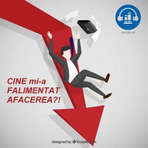 Cursuri de Management Strategic, Marketing, Internet Marketing si Vanzari 2