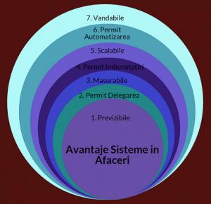 sisteme in afaceri